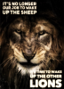 It's Time to Wake Up the Other Lions